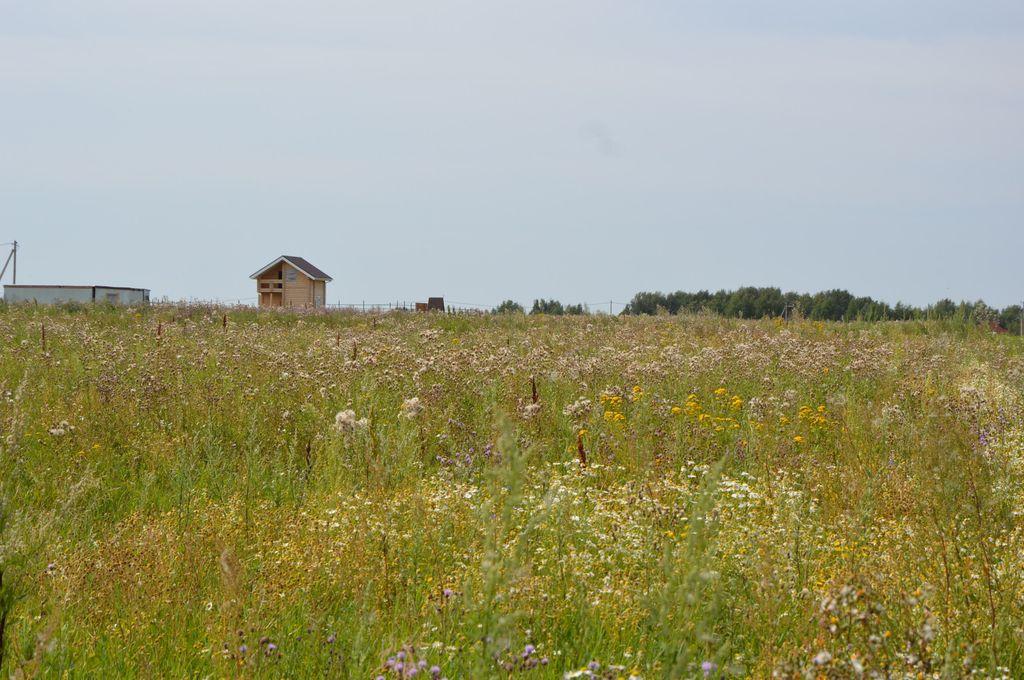 Три поселка под Дзержинском могут стать сельскими - фото 1